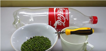 Выращивание ростков бобовых в пластиковой бутылке за 3-4 дня. Удивительный лайфхак